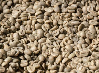 コーヒー豆の「精製」って何?
